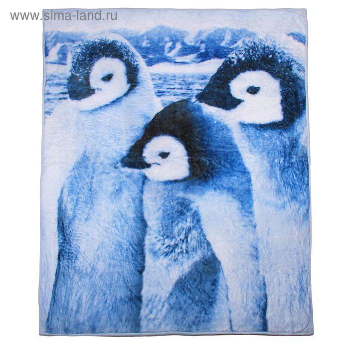 "Плед ""Collorista"" Пингвины 120*150 см, акрил, 370 гр/м2"