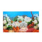 """Фон для аквариума """"Растения пресноводные""""/""""Белые кораллы"""" 30см*15м"""
