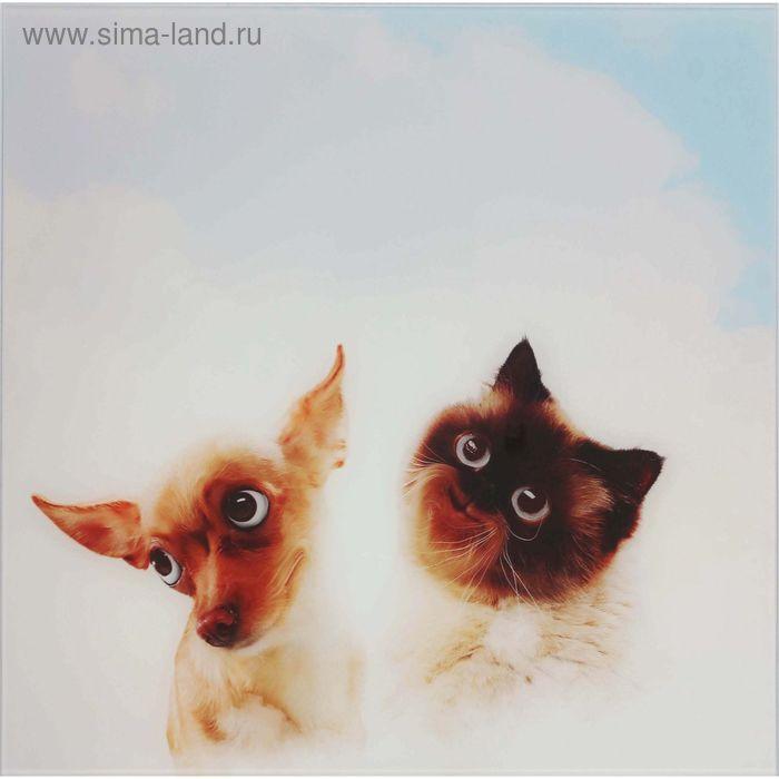 """Картина на стекле """"Питомцы в облаках"""" пёс и кот"""