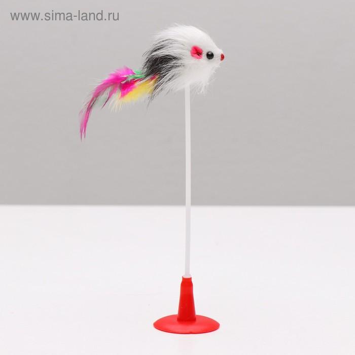 Дразнилка Мышь на присоске, искусственный мех с перьями, 20 см