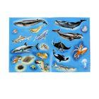 Книжка с наклейками «Кто живёт в океане» - фото 106538297