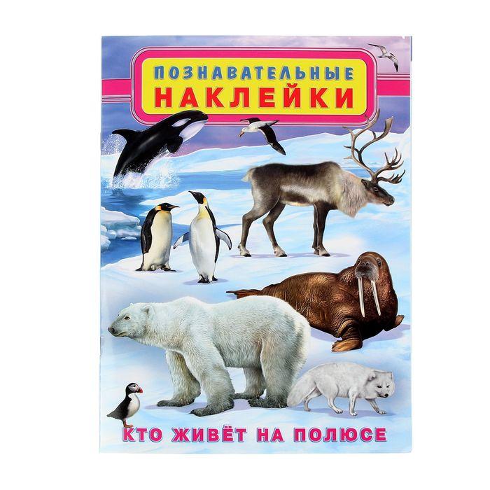"""Познавательные наклейки """"Кто живет на полюсе"""" - фото 975134"""