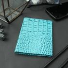 Обложка для автодокументов, светло-голубой