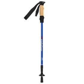 Палка для скандинавской ходьбы, телескопическая, 3 секционная, алюминий, до 135 см, (1 шт), цвет чёрно-синий