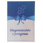 """Папка для свидетельства о рождении """"Пустышка и бантик"""", синяя, А5, ламинированная"""