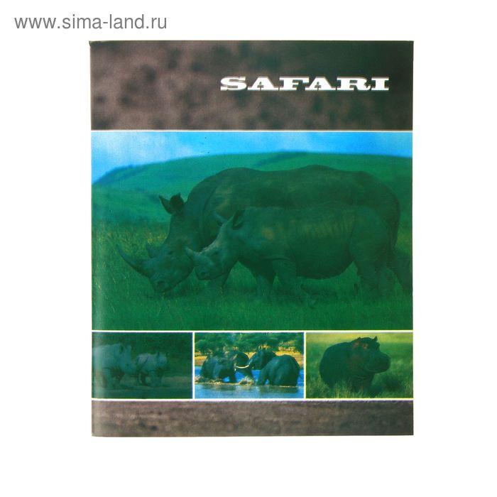 """Тетрадь 48 листов клетка Safari """"Носороги"""", офсет"""
