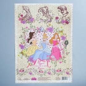 Декупажная карта 'Чудеса там, где в них верят', Принцессы Дисней, 21 х 29,7 см Ош