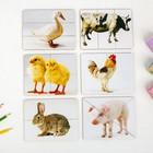Разрезные картинки «Домашние животные» - фото 105589298
