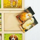 Картинки-половинки «Домашние животные», 2 планшета - фото 105589302