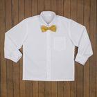 Сорочка нарядная для мальчика, рост 98-104 см (27), цвет белый