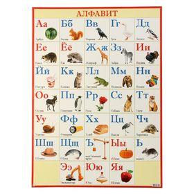 Плакат 'Русский алфавит' 50х69 см Ош