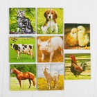 """Картинки-половинки """"Домашние животные"""""""