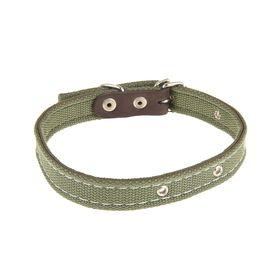 Ошейник брезентовый двухслойный, 50 х 2 см, ОШ 25-45 см, тёмно-зелёный