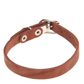 Leather dog collar single-ply, 30 x 1 cm, brown