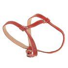 Шлейка кожаная двухслойная, регулируемая многоразмерная, 75 х 1,2 см, для маленьких кошек/собак, красная