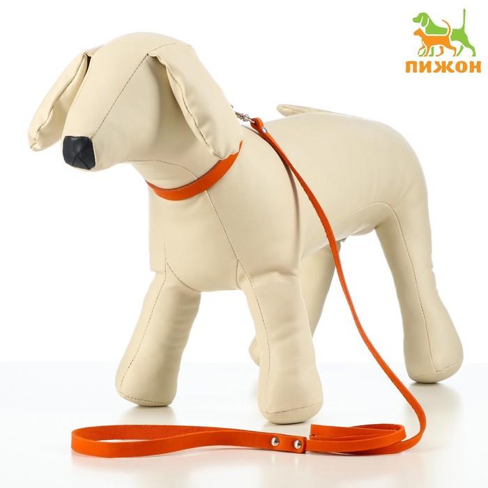 Комплект кожаный ошейник 35 х 1,2 см и поводок 135 х 0,8 см, рыжий