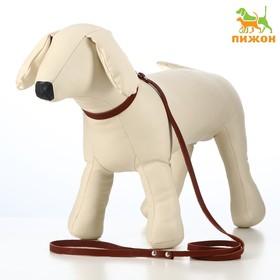 Комплект кожаный ошейник 33 х 1,2 см и поводок 135 х 0,8 см, коричневый