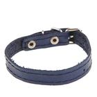 Ошейник кожаный однослойный, 25 х 1,2 см,  синий