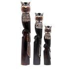 Набор Совы на дереве объемные резной декор 100,80,60 см дерево албезия арт.72257/1