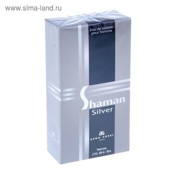 Туалетная вода мужская Shaman Silver, 100 мл
