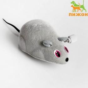 Мышь заводная, 7 см, серая - быстрая доставка