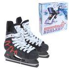 Коньки хоккейные 206Р black, размер 38