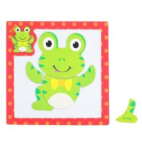 Designer magnetic frame, Frog