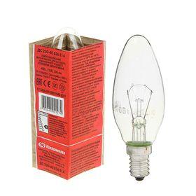 Лампа накаливания КЭЛЗ, ДС, Е14, 40 Вт, 230 В