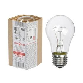 """Лампа накаливания """"Лисма"""", Б, Е27, 60 Вт, 230 В"""