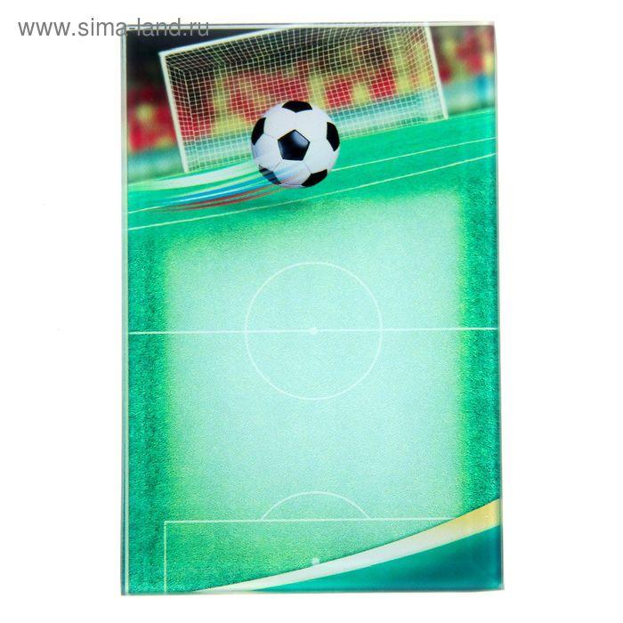 """Награда спортивная """"Футбол"""" 8 х 12 см"""