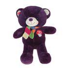 Мягкая игрушка «Медведь с шарфом и вышивкой», цвета МИКС