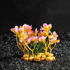 Растение искусственное аквариумное Вашингтония Фиолетовая, 10 см