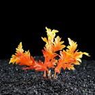 Растение искусственное аквариумное Лимнофила, 10 см, оранжевая