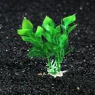Растение искусственное аквариумное Людвигия, 10 см, зеленая