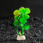 Растение искусственное аквариумное Эхинодорус, 10 см