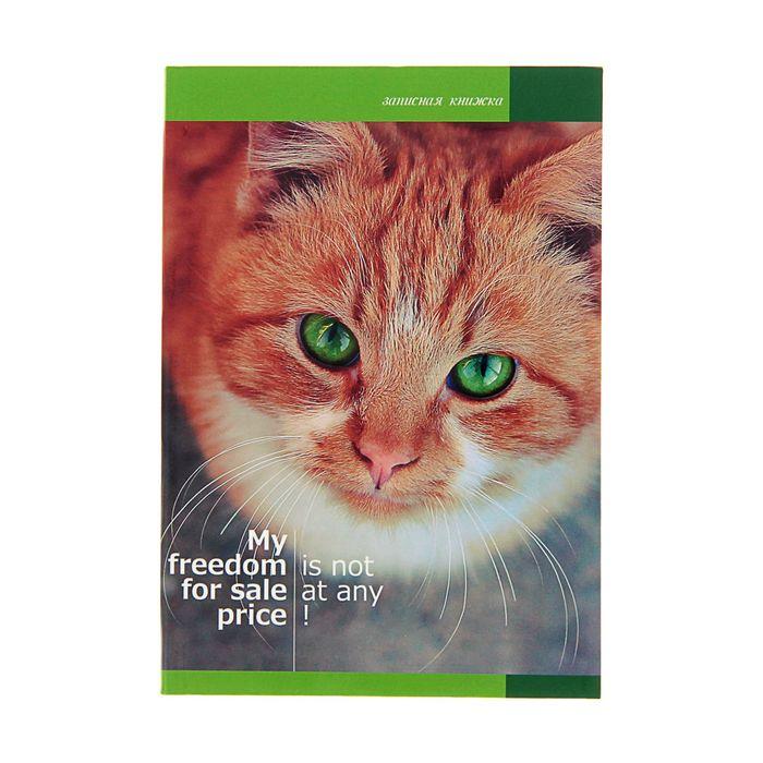 """Записная книжка, интегральная обложка, А6, 80 листов """"Кошка"""", глянцевая ламинация"""