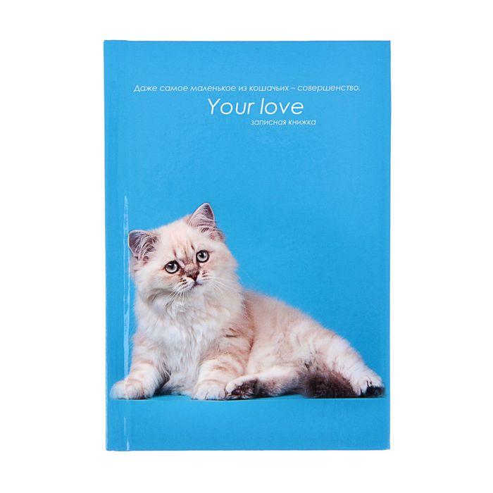 """Записная книжка твёрдая обложка А6, 48 листов """"Белая кошка на голубом"""", глянцевая ламинация"""