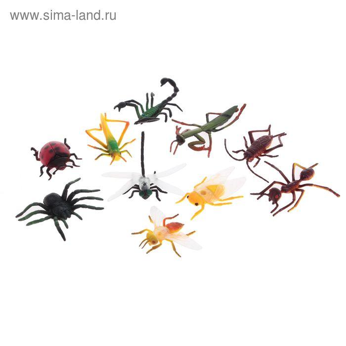 Набор животных «Насекомые», 10 фигурок