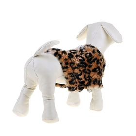 Leopard print coat for dogs (HB=19 cm, OG=31 cm, or=22 cm) XS