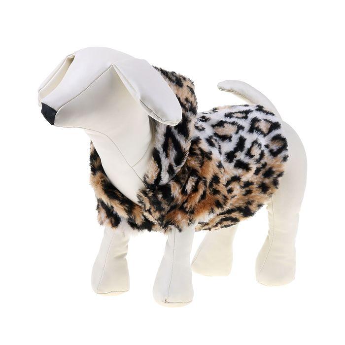 Шубка леопардовая с капюшоном для собак,(ДС=28 см, ОГ=38 см, ОШ=28 см)  L