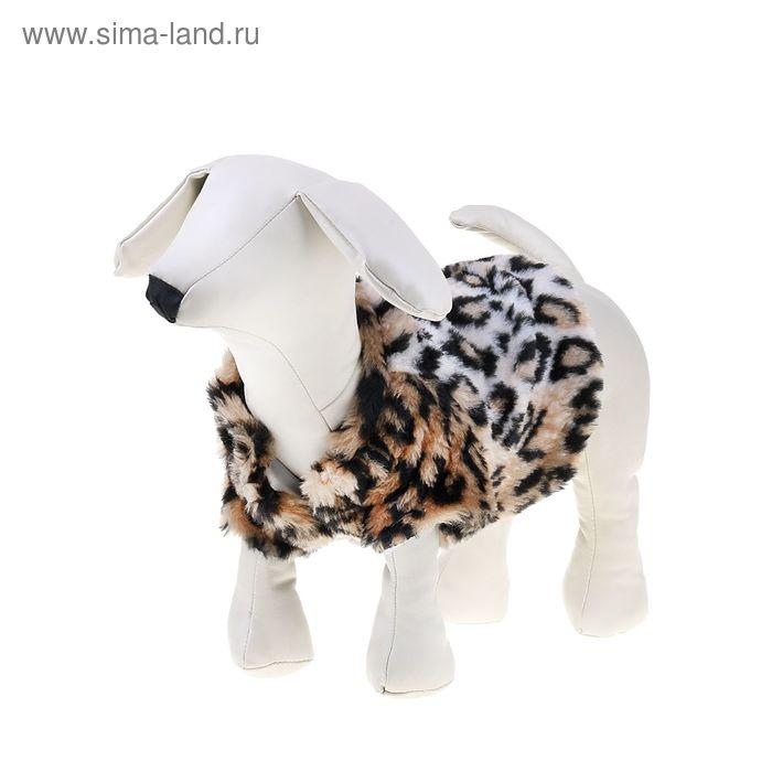 Шубка леопардовая для собак, (ДС=25 см, ОГ=36 см, ОШ=26 см)  М