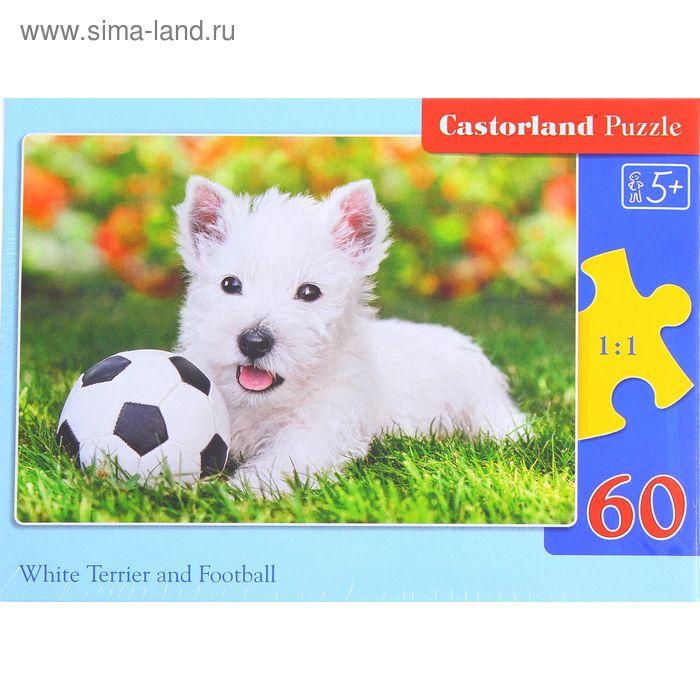 """Пазлы """"Белый щенок с мячом"""", 60 элементов"""