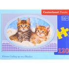 Пазлы «Котята на одеяле», 120 элементов