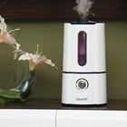 Увлажнитель воздуха Galaxy GL 8003, ультразвуковой, 35 Вт, 2.5 л, белый