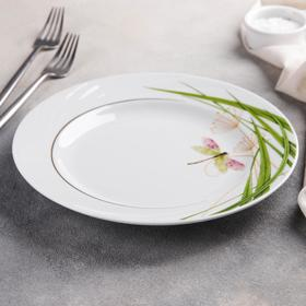 Small plate 24 cm