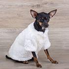 Шубка белая для собак, (ДС=19 см, ОГ=31 см, ОШ=22 см) XS