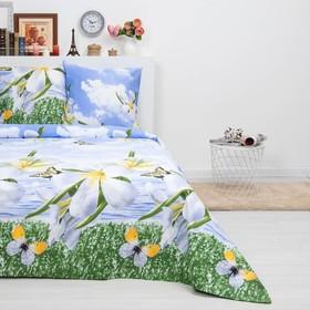 Bed linen duet Sudarushka Maria 150 * 215 cm 2 pcs., 220 * 240 cm, 70 * 70 cm 2 pcs., Calico, 125 g / m