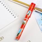 Pen gift Krasnoyarsk