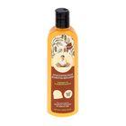 Шампунь для волос Рецепты бабушки Агафьи, лимонниковый, свежесть и живой блеск, 280 мл