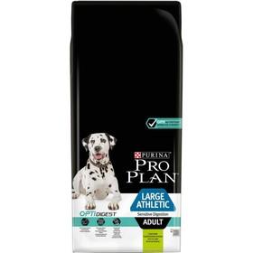 Сухой корм PRO PLAN Atletic для собак крупных пород, ягненок/рис, 14 кг